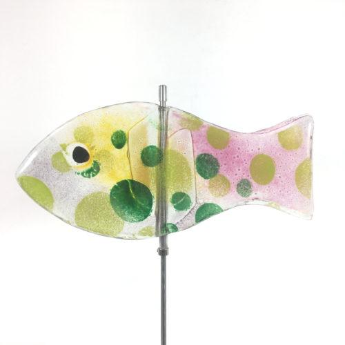 Glasfisch Sardine V Bild 1