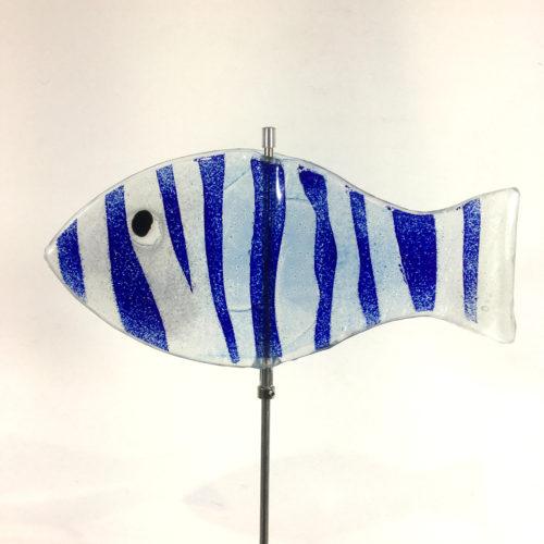 Glasfisch Sardine VII Bild 1