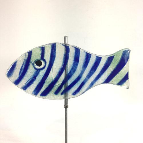 Glasfisch Sardine XI Bild 1