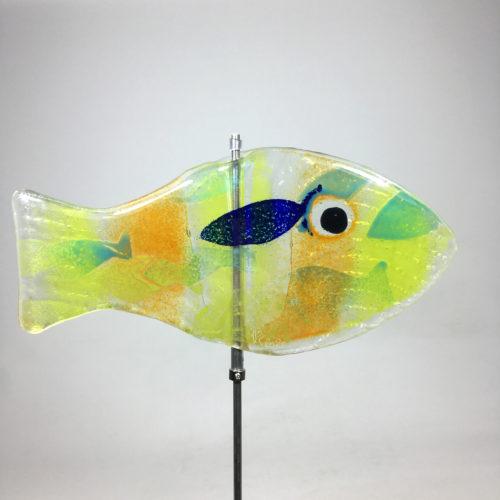 Glasfisch Sardine VI Bild 1