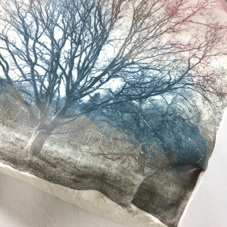 Wandobjekt Eiche ohne Blätter Bild 2